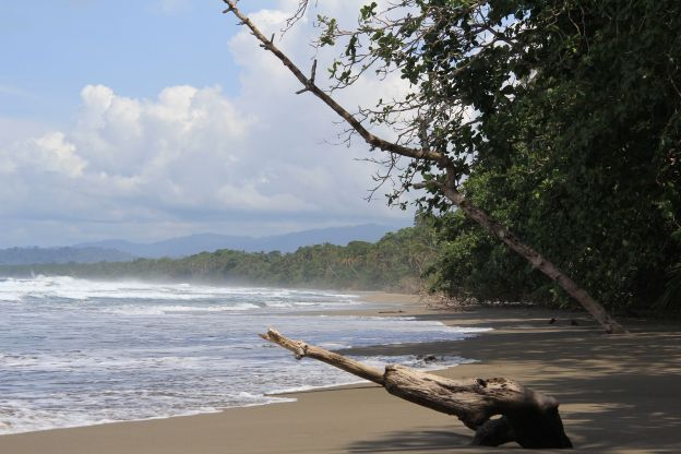 Cahuita: Lost (in) Paradise | Comeback mit Backpack #weltumwelttag