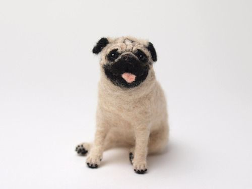 Best 25+ Toy pug ideas on Pinterest