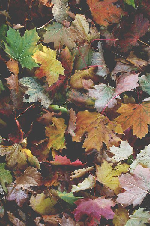 float down like autumn leaves