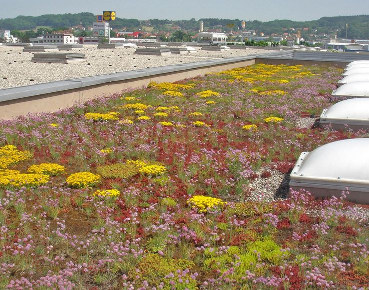 REWE Linz, Austria UltraPly TPO Ballasted Green Roof 2.000 m²