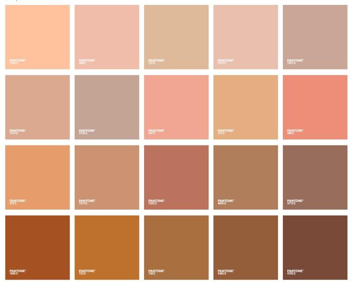 Pantone Skin Color Guide