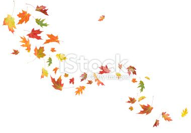 Fall Leaves Tattoo Designs | Autumn Leaves Blowing in the Wind Stock Photo 20567826 - iStock