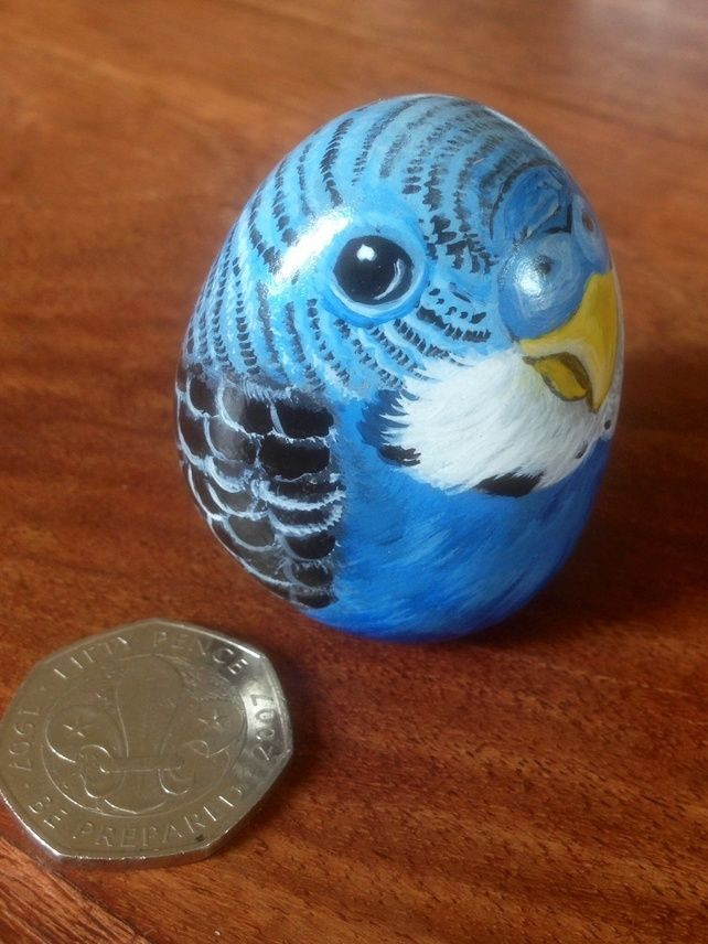 Pet budgie hand painted on rock
