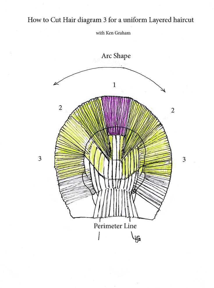 how to cut hair in layers diagram3