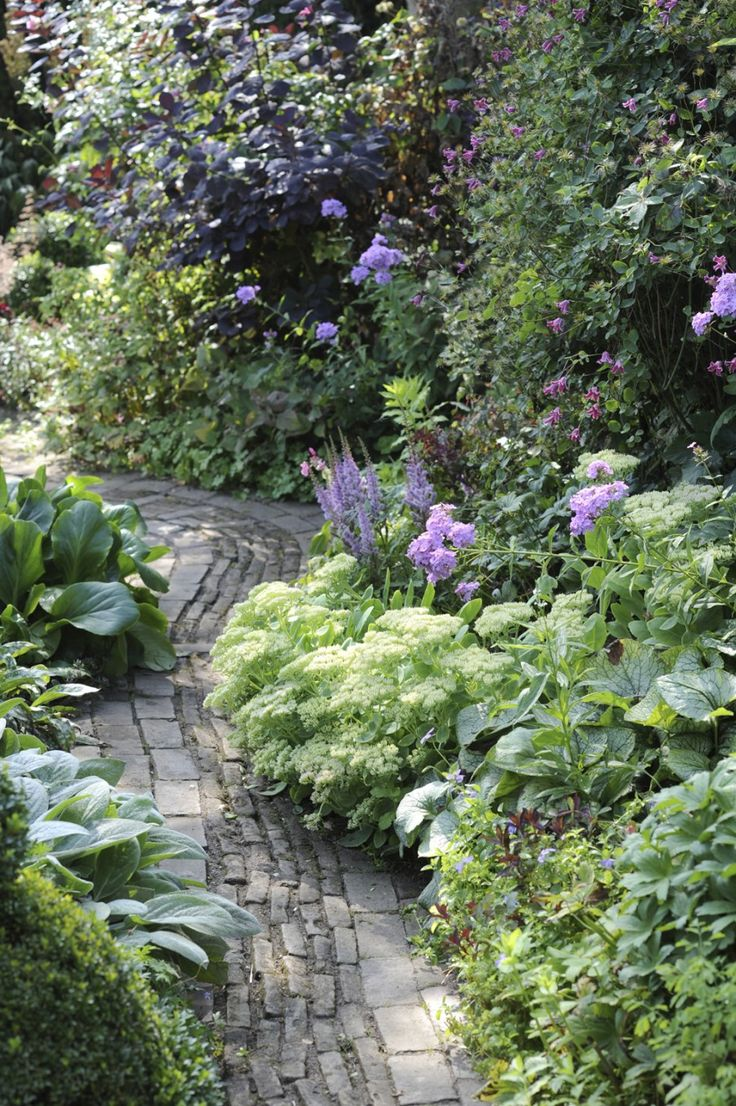 Simple but nice garden path twists in a bit mysterious way through the garden - tuin-fam-de-koster-paars #paths