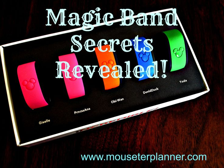 Have you received YOUR MagicBands in the mail? Anticipating your upcoming trip? We recentlyreturned from a trip to Walt Disney World, using our MagicBands for the very first time.From a Newbie's ...