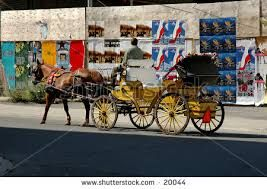 Image result for montreal horse ride