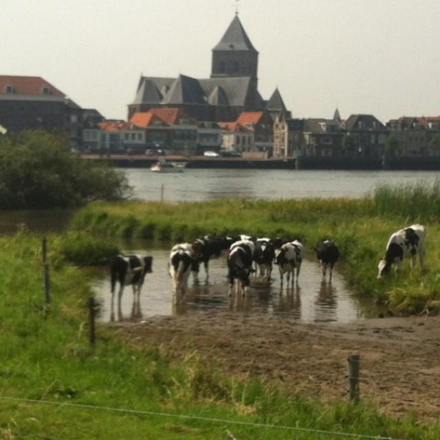 Beschrijf je pin...Cooling down Kampen Netherlands