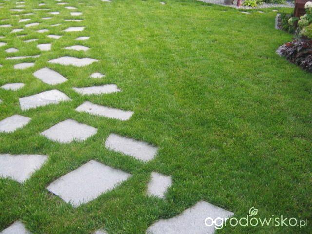 Metamorfozy ogrodowe - strona 3 - Forum ogrodnicze - Ogrodowisko