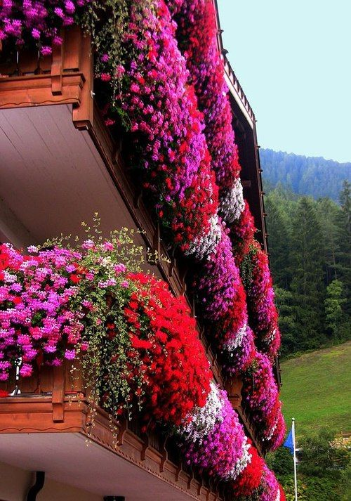 Flower balconies in Trentino, South Tyrol, Italy.