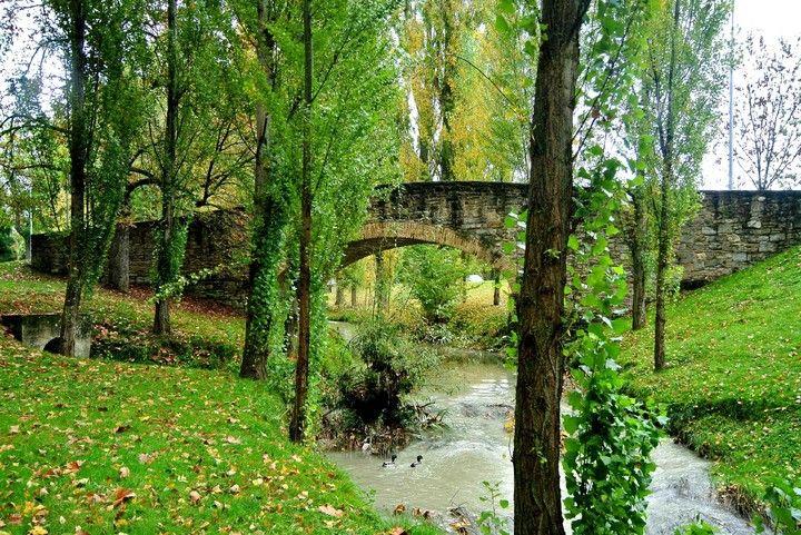 Camino de Santiago entorno a la universidad de Navarra