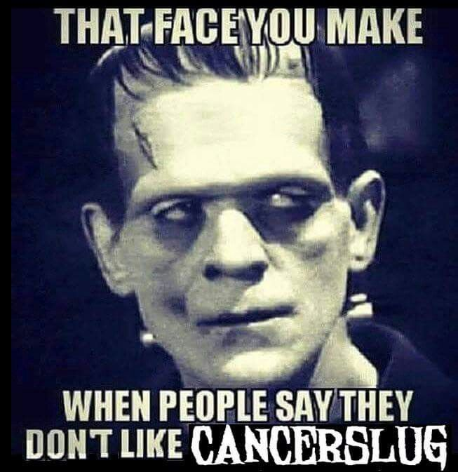 Classic Horror Movie Quotes: 114 Best Cancerslug & Alex Story Images On Pinterest