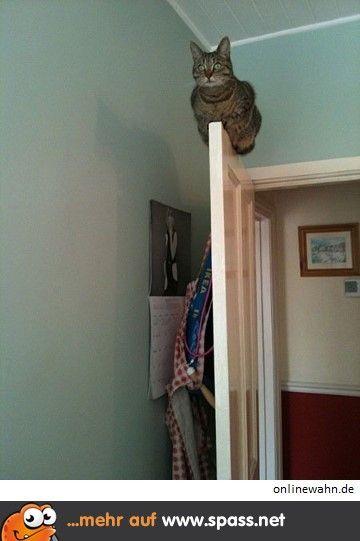 Ich schlafe hier oben
