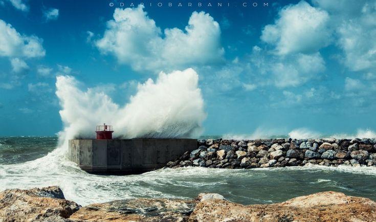 Big Wednesday by Dario Barbani