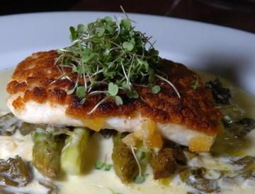 Anchova, bagre, cação e traíra são algumas das sugestões oferecidas pelo Gastrô