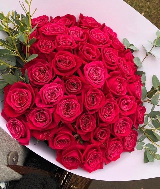 Red Roses Flowers And Roses Image Guller Bahce Kirmizi