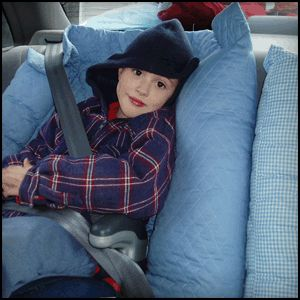 nappernoo making the ride home a little more comfortable great ideas pinterest kid love and home