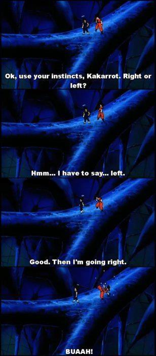 Goku and Vegeta.