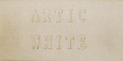 Aardvark Clay's  Artic White - 25 lbs.