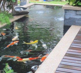 Fish Pond Design | Fountain Design & Trading | Page 2