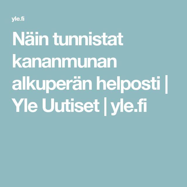 Näin tunnistat kananmunan alkuperän helposti   Yle Uutiset   yle.fi