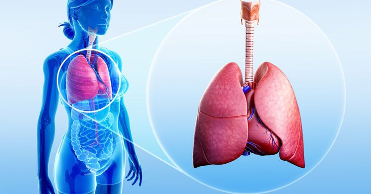 Most of the smokers who quit smoking don't really feel the need to detoxify the lungs after they quit….