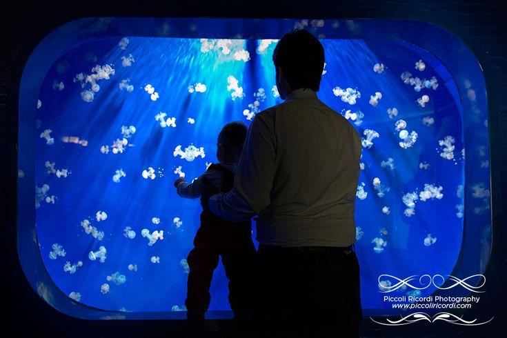 acquariovillage - acquario village - fotografo bambini milano lifestyle family famiglia bambini bambino baby acquario di genova