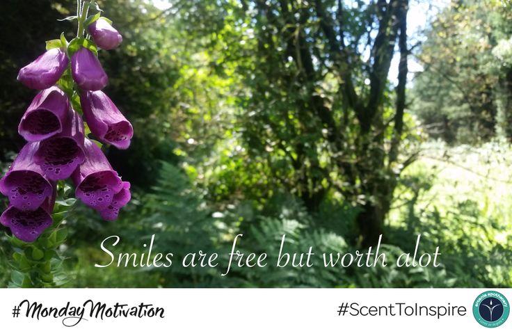 #MondayMotivation - #Smiles are #Free but worth a lot!   #FreeSmiles #Monday #BackToWorkBlues #MondayMorning #OfficeLife #MondayBlues #BackToWork #YouCanDoIt #UK