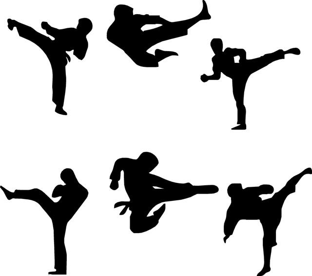 El origen de las artes(1,500 a.c.) marciales se le atribuyen a un monje budista llamado Bohdhidharma (Tamo o Daruma Taishi) que nació en el sur de la India, y que vivió en lo que hoy conocemos como Kerala y el país Tamil.