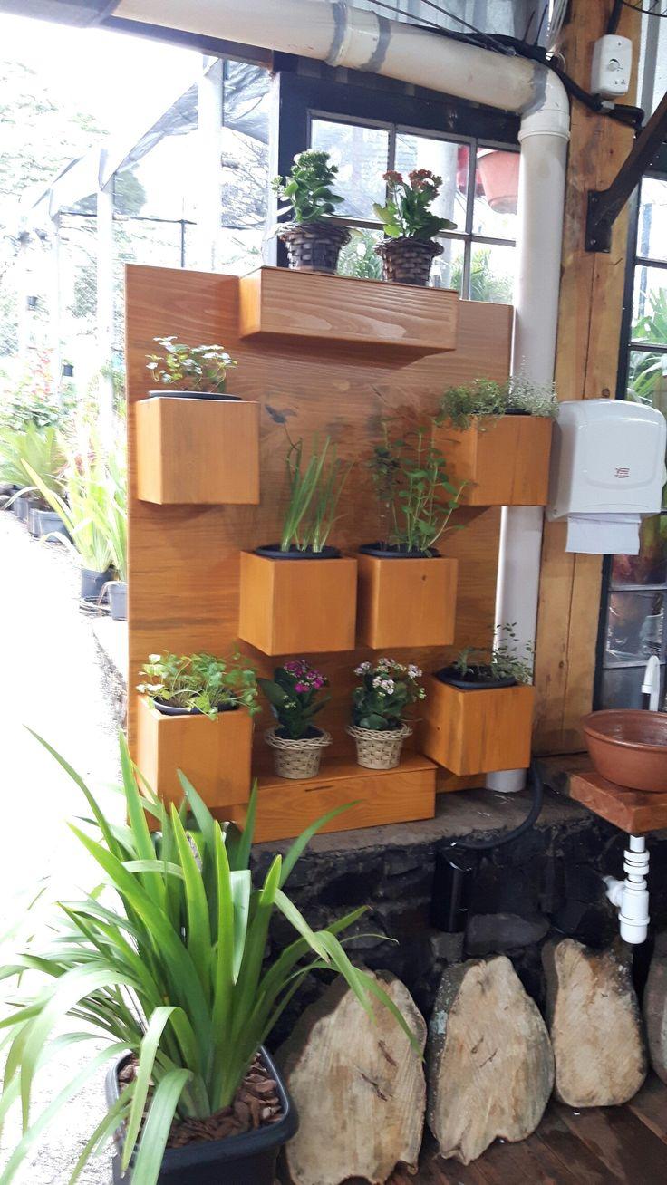 Com irrigação semi automática e aproveitamento da agua.