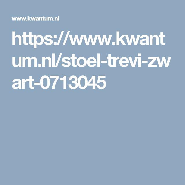 https://www.kwantum.nl/stoel-trevi-zwart-0713045