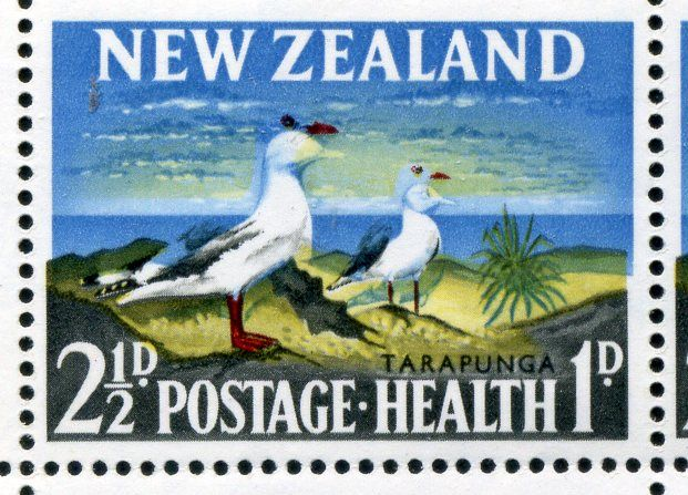 NZ Error 1964 Health 2 1/2d Seagulls M/S of 8 unh mint, dramatic shift of blue downwards 1.5mm, design now reduced in size, red & yellow now out of place, dramatic, stunning in full sheet, a similar sheet sold for $2500 a few years back, only second sheet recorded