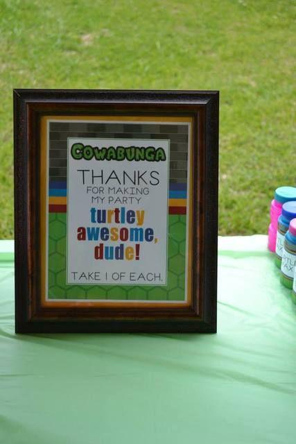 Teenage Mutant Ninja Turtles Birthday Party Ideas