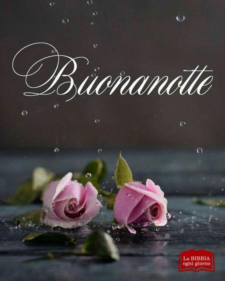 Eccezionale 979 best Buongiorno, buona notte, buon pomeriggio images on  PI33