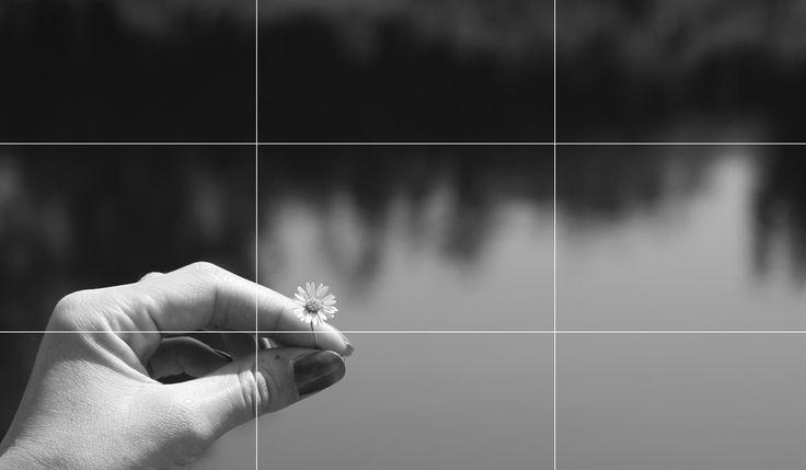 De regel van derden in de fotografie word ook wel de gulden regel genoemd. Wat…