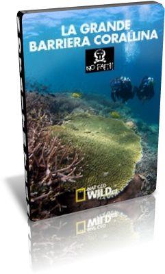 NatGeoWild – La grande barriera corallina – PDTV AC3 x264 – iTA [3/3 Completa] | Feature Magazine