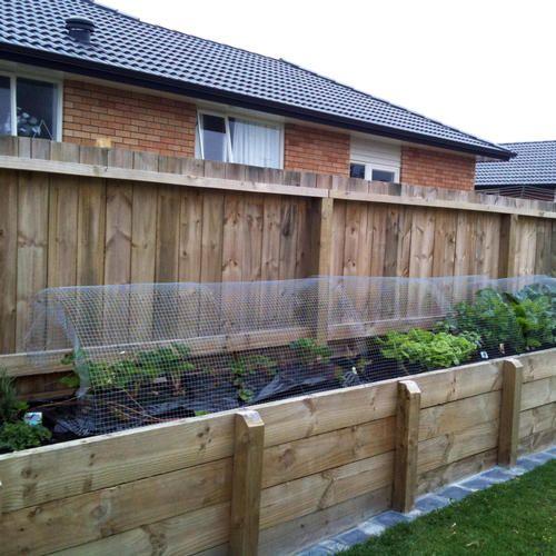 Raised Vege Garden - After