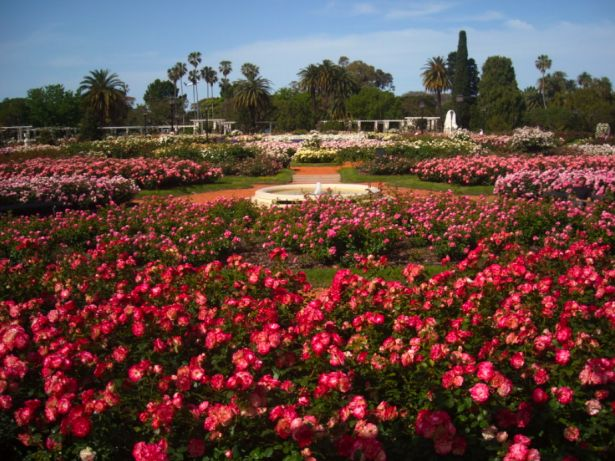 Rosedal, Buenos Aires, Argentina – free entrance This gorgeous park can be considered a huge garden that displays various roses from all around the world.