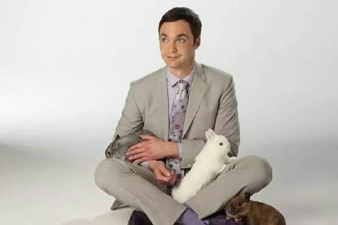 Jim parsons (Sheldon) and rabbits
