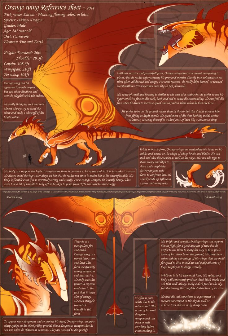 images about dragons dragon rider red dragon 1000 images about dragons dragon rider red dragon and white dragon