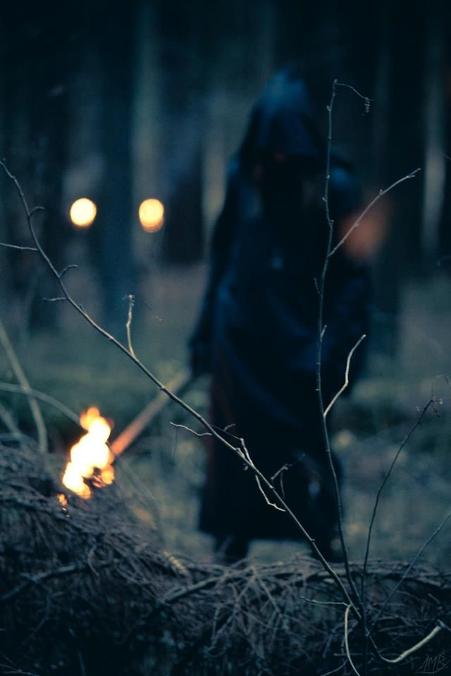 "((Open RP, I'm the ""Witch"". Up to 3 people)) I snarl angrily at the man waving around the fiery torch, screaming and demanding my death. The ropes cut into my wrists as I strain against the bonds ""Let me go!"" I cry out. The man turns around, a burning fire of fury and hatred in his eyes ""Die witch!"" He screams and throws the torch on the pile of dry bush. The flames are closing in when I hear screams from the villagers, and a dark figure shows. ((Credit to @FandomGoddess1))"
