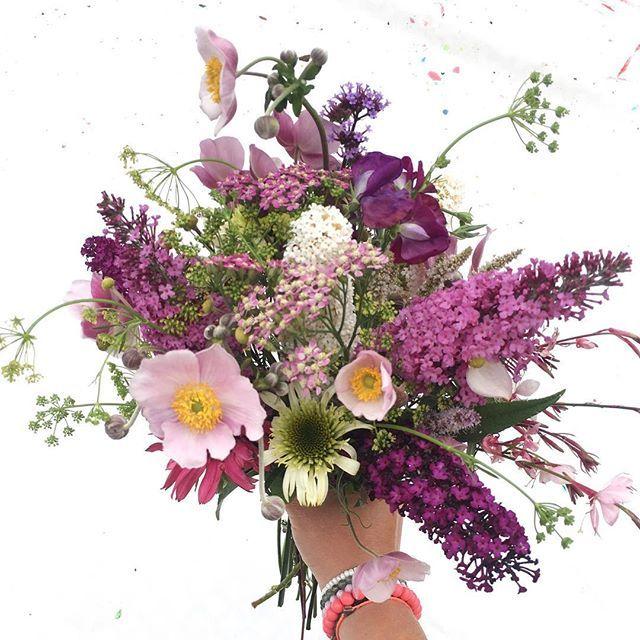 parsley looks like fireworks 🌺🌿💕✨ Den skønneste buket fra haven - et herligt sammensurium af stauder, sommerblomster, buske, krydderurter og ukrudt. En buket lige efter mit hjerte til min dejlige mor 🌺☘🌸🌿💟 #flowersfrommygarden #floweryourlife #onebouquetaweek #flowerpower #gardenersofinstagram #rainbow_wall #wildflowers #gardenflowers #prettyinpink #blomsterfrahaven #mitkrearumflowers #mitkrearumgarden