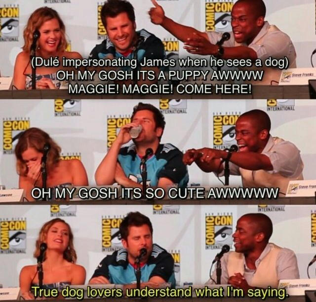 I fucking love this cast so much they're all so adorable.. for real though that's me when ever I see a dog