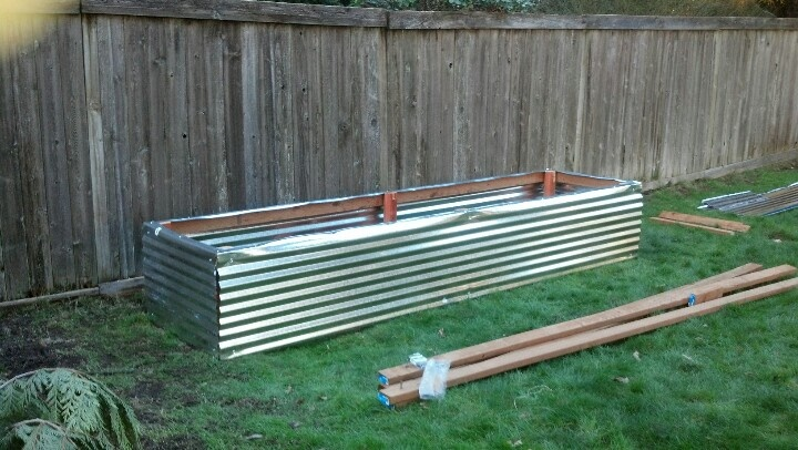 Corrugated metal raised bed raised garden beds pinterest corrugated metal raised bed and for Corrugated metal raised garden beds