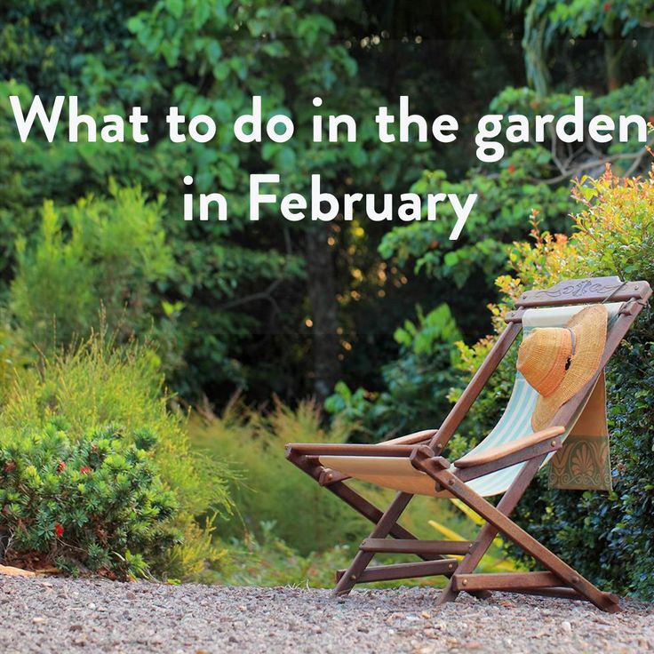 Month by month Australian gardening tips.