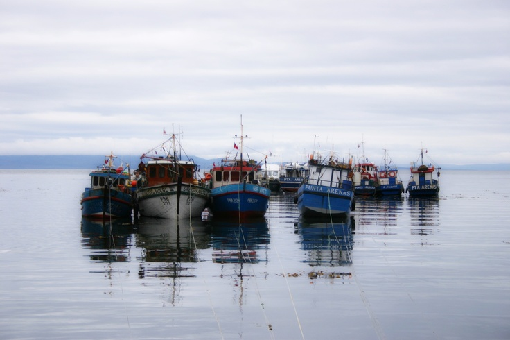 Bahía Mansa, XII región, Chile.