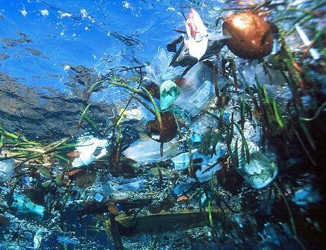 Great Pacific Garbage Patch_an island of trash floating around in our ocean :(