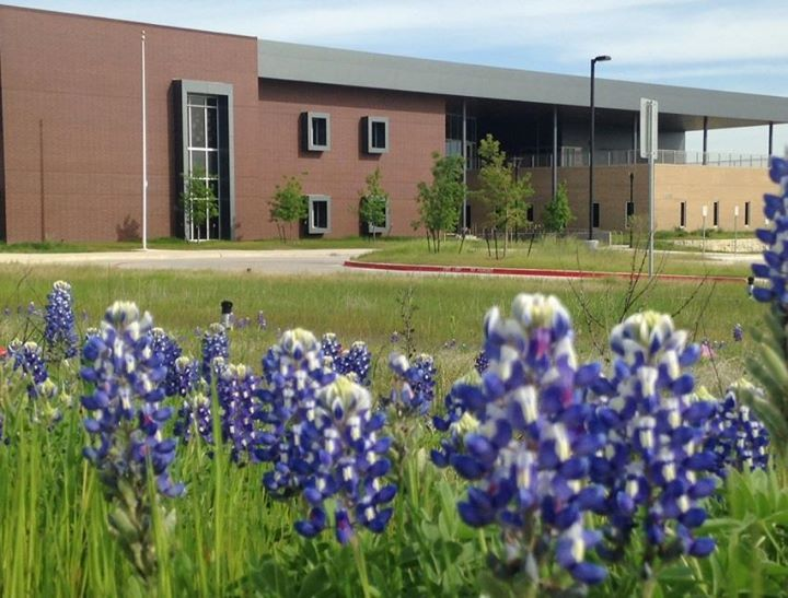 On the Sustainability front, we love the landscaping with native plants and  prairie grasses at