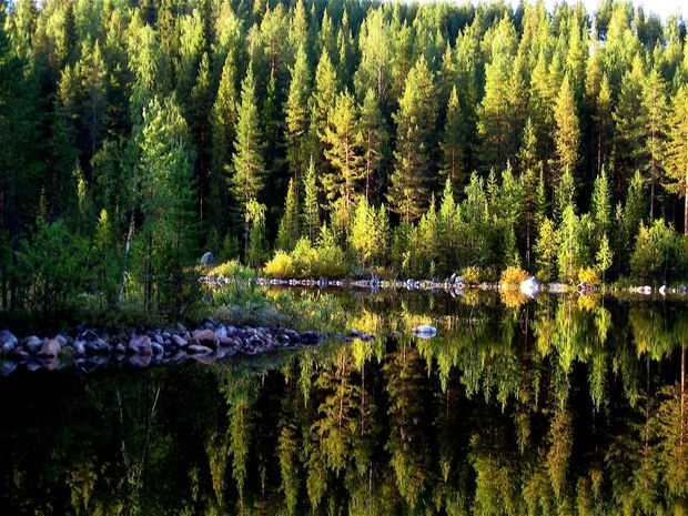 Laponie suédoise / par amy - Communauté GEO