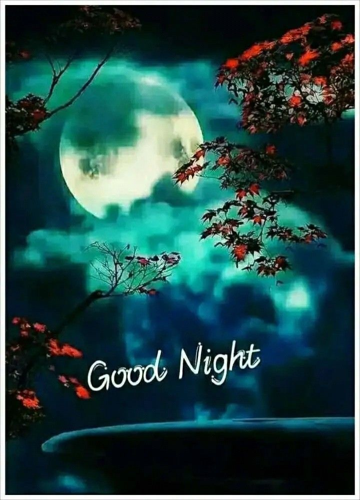 Pin By Indra Sharma On Cute Good Night Good Night Love Images New Good Night Images Beautiful Good Night Images